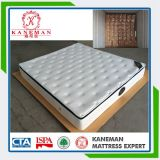 OEM Accept Bed Mattress Bonnell Spring Mattress in a Box