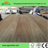 1220*2440*18mm Marine Plywood/ Film Faced Plywood/ Shuttering Plywood/ Waterproof Plywood