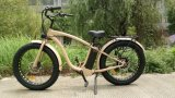 Very Nice and Comfortable Electric Bike with Good Price