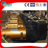 Swimming Pool High Quality IP68 Circulating Water Pump