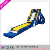 Giant Inflatable Water Slide Giant Inflatable Drop Kick for Sale