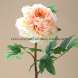 Factory Wholesale Fake Peony Artificial Flowers with Different Colors