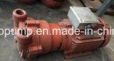 2BV2 060 Liquid Ring Vacuum Pump