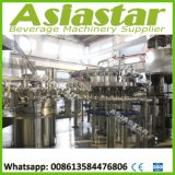 Carbonated Drink Riner Filler Capper Machine Soft Water Packing Line