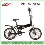 250W Electric Bicycle with Low Cost and Hub Motor
