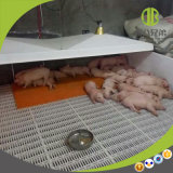 Electric Heating Plate for Pig with Good Insulation Effect