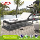 Popular Used Chaise Lounge (DH-9549)