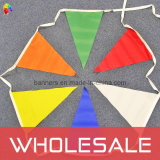 Pennant Flag, Triangle Flag, String Flag, Bunting Flying Flag (BL-BC052P)