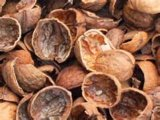 100% Natural Walnut Extract 10: 1