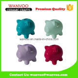 Colorful Piggy Bank Animal Shape Ornament for Home