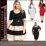 High Quality Woman Fashion Party Lace Plus Size Dress (TP4448)