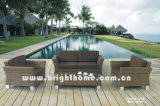 PE Rattan Wicker Garden Sofa Set Bg-N09