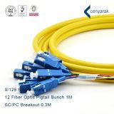 High Quality Sm SC/PC 12f Fiber Optic Pigtail