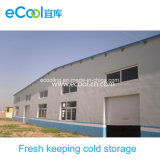 Middle Scale Fresh Keeping Cold Room for Vegetables and Fruits