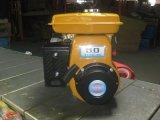 Gasoline Robin Engine (EY20)