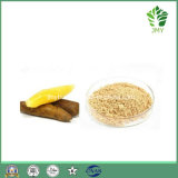Whitening Cream Health Food 10: 1; 20: 1 Yacon Fruit Extract