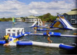 Giant Inflatable Adult Big Water Slides for Sale