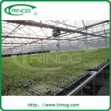 Polyester greenhouse for micro greenhouse
