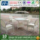 Wicker Patio Rattan Outdoor Garden Furniture Dining Chair Set (TG-1639)