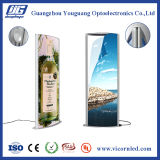 Vertical Biconvex LEDLight Box with two long side of LED lens-TPH