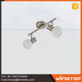 American Style Iron & Glass 10W Ceiling Spotlight Make in China