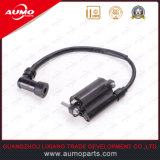 China Supplier Ignition Coil for GS200 200cc Motorcycles for Sale