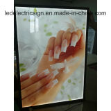 Advertising LED Display for Acrylic Light Box