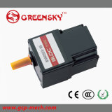 GS 25W 80mm Small Size DC Brushless Gear Mirco Motor