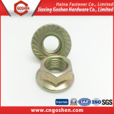 Hex Flange Nuts DIN6923