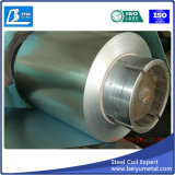 Rolled Sheet Metal Galvanized Steel Sheet Iron Roll Factory