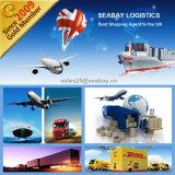 Shenzhen Professional Sea Shipping Agent to Felixstowe UK