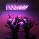 45W LED Grow Light, Hydroponic Grow Board