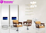 Styling Chair, Salon Chair, Barber Chair, Hairdressing Chair (Package NP1085)