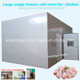 Large Usage Deep Freezer Cold Room for Chicken Storage