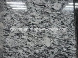 Sea Wave/Spray White Granite Tiles & Slabs & Stairs for Building Materials