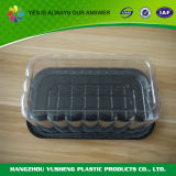 Guaranteed Quality Lightweight Fast Food Takeaway Packaging Box