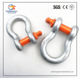 Forging Parts Alloy Steel Screw Pin Anchor G80 Shackle Rigging