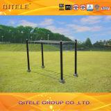 Outdoor&Indoor Gym Fitness Playground Equipment (QTL-2701)