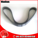 Hot Selling M11 Cummins Engine Part Fan Belt 3288587