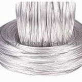 Tongguan Brand Galvanized Steel Wire