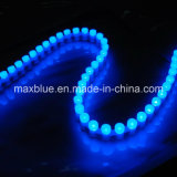 Great Wall LED Strip for Automative Decoration