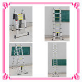 3 Position Telescopic Ladder