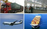 Consolidate Shipping Agent for Cargo From Zhuhai to Us, Canada, Mexico Shipping