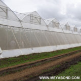 HDPE Transparent Agricultural Anti Insect Net/Greenhouse Insect Net