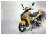 Hawk 1500W 2000W Super Fast Electric Motorcycle Motorbike Scooter (HD1500-CY2)