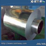 PPGI Pre-Painted Galvanized Steel Coil Competitive Price