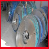 AISI Stainless Steel Strip (301 304 316 316L)