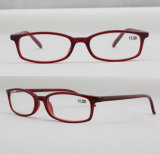 Designer Name Brand Optical Frame Reading Glasses/Eyeglasses/Eyewear/Spectacles