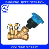 Jpf Static Balancing Valve with Good Quality