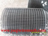 China Supplier Factory High Quality Welded Wire Mesh in Competitive Price
